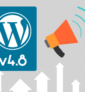 wordpress 4.8 what to expect