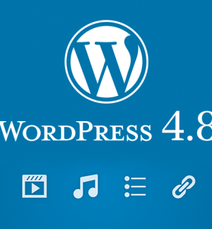 new features wordpress 4.8