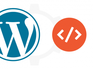 The Best WordPress Plugins for Displaying Code Snippets (2018)