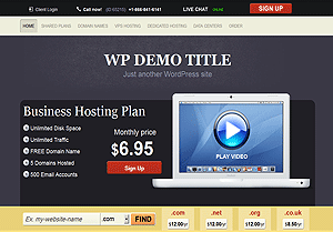 clean style wordpress hosting theme